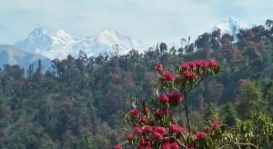 Ganesh Himal from the trail between Barpak and Laprak